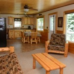 kitchen and living room with log furniture
