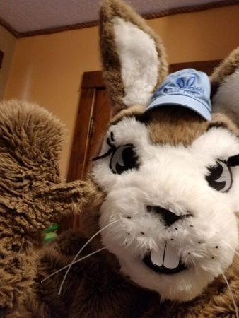 Riverside-rabbit-takes-a-selfie